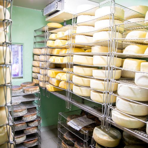 DiversiFerm-fromage-2